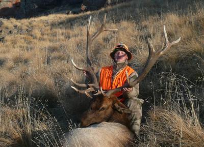 Colorado Bull Elk - Cliff Gray Guide