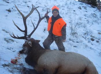 Flat Tops Bull Elk Hunting