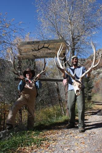 Flat Tops Wilderness Guides Bull Elk