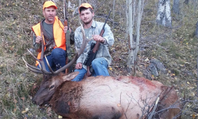Flat Tops Bull Elk