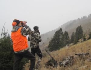 Flat Tops Wilderness Mule Deer Hunting