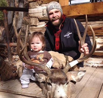 Mule Deer Buck