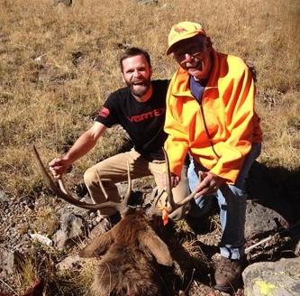 Bull Elk at Timberline