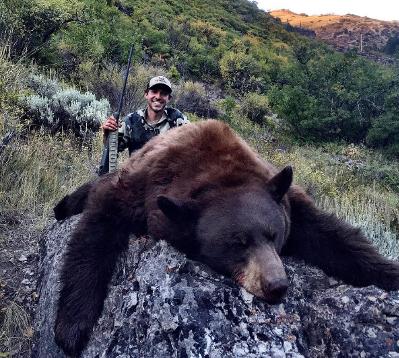 Colorado Bear Hunting