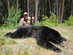 Spot and Stalk Coastal Black Bears